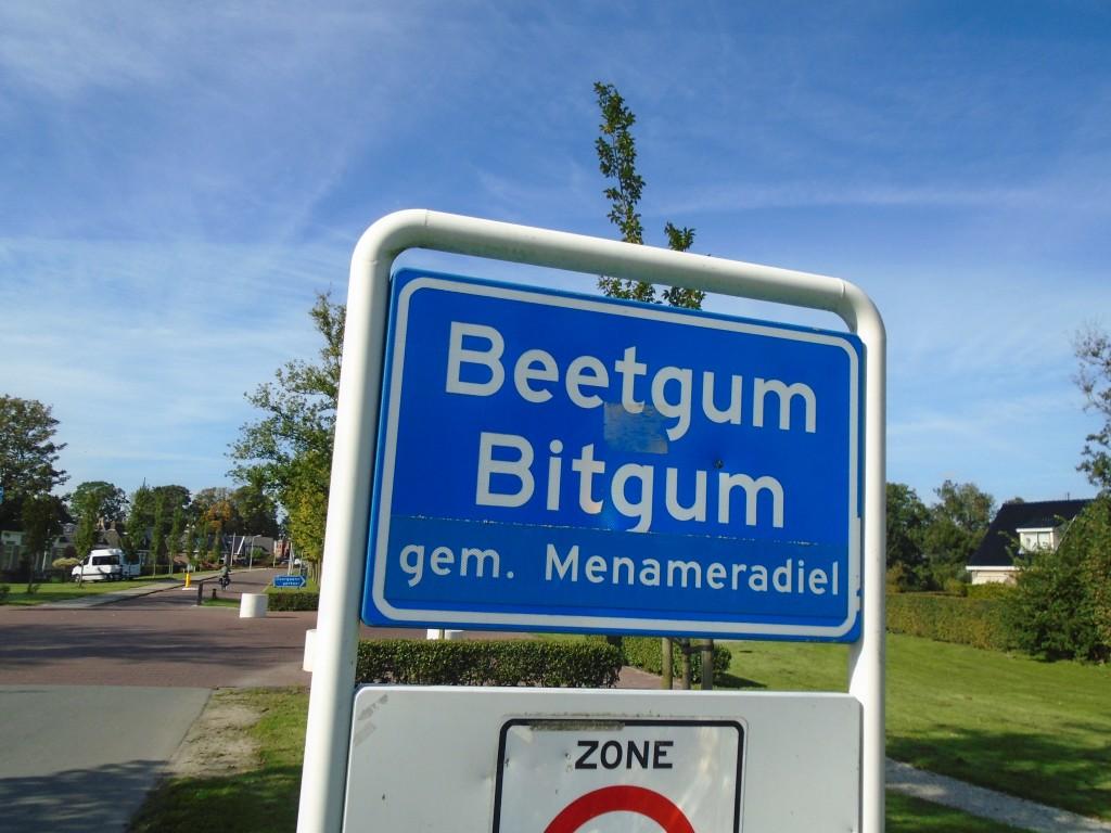 Beetgum